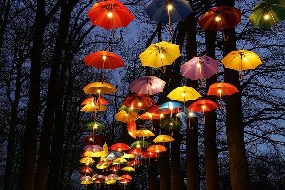 Paraplufestival van Leo van Vliet