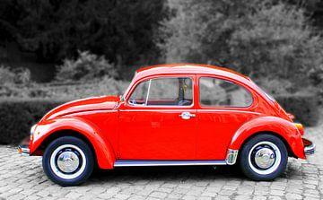 VW Kever van Elly Wille-Neuféglise