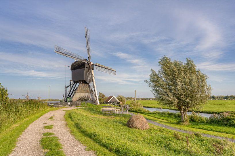 Windmühle in Kinderdijk von Michael Valjak