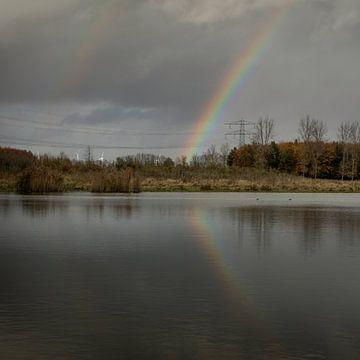 Dunkle Wolken in einem Herbstwald mit einem Regenbogen von Rene  den Engelsman