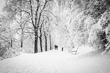 Winter boswandeling