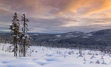 Winterlandschap, Noorwegen van Adelheid Smitt