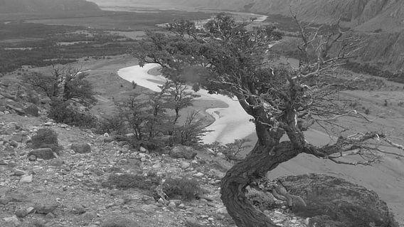 Valle Rio de las Vueltas, Patagonien van Heike und Hagen Engelmann