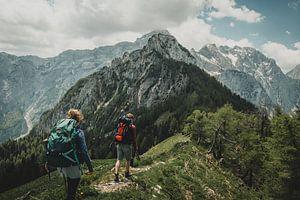 Bergwandelaars