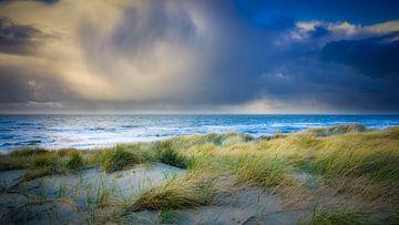 Dünen in den Niederlanden von eric van der eijk