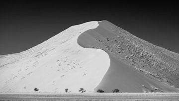 Sossusvlei Namibië (4) in Zwart-Wit van Adelheid Smitt