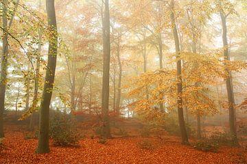 Herfst en Nevel 2 van Joop de Lange