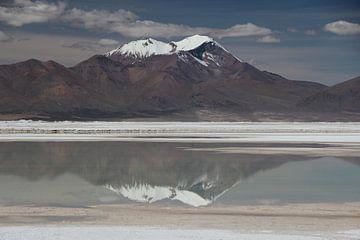 Weerspiegeling van bergtoppen Andes op natte zoutvlakte nabij San Pedro de Atacama van A. Hendriks