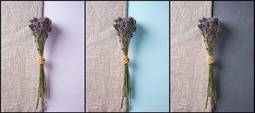 Lavendel en hessian van Graham Forrester