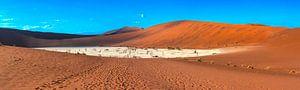Panorama van de Deadvlei, Namibië