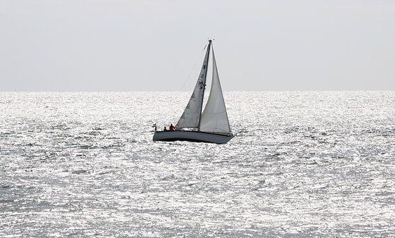 Zeilbootje op Oosterschelde