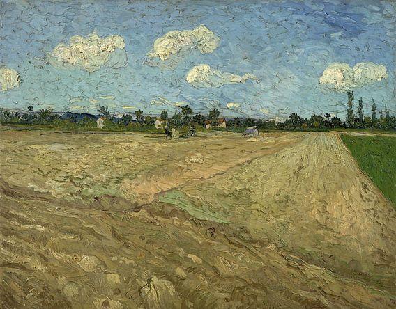 Vincent van Gogh. Geploegde akkers, 1888