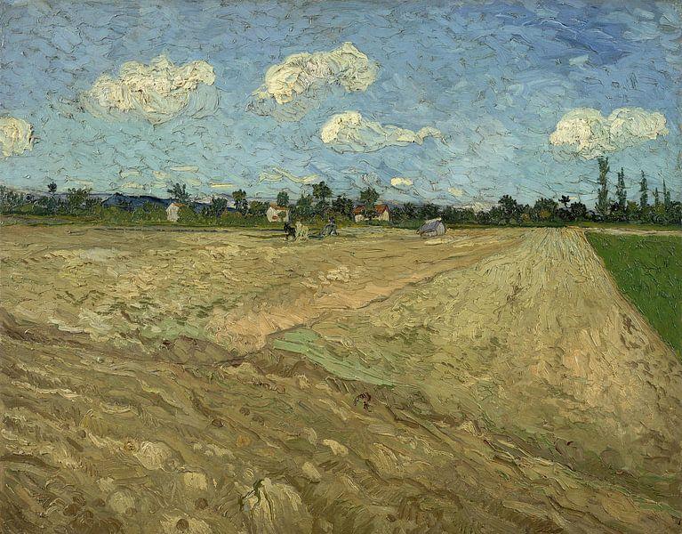 Vincent van Gogh. Geploegde akkers, 1888 van 1000 Schilderijen