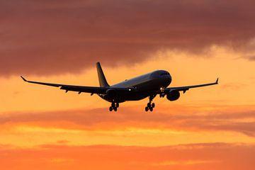 Passagiers vliegtuig Delta. van Kevin Nieuwland