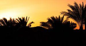 Zonsondergang Egypte