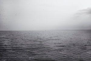 Stip op de horizon II