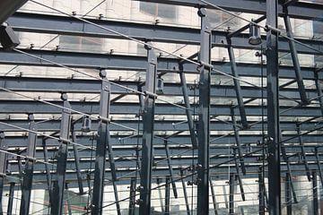 Structural Glazing van Ed Mol