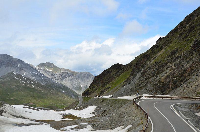 Swiss Alpine Adventure van Marcel van Duinen