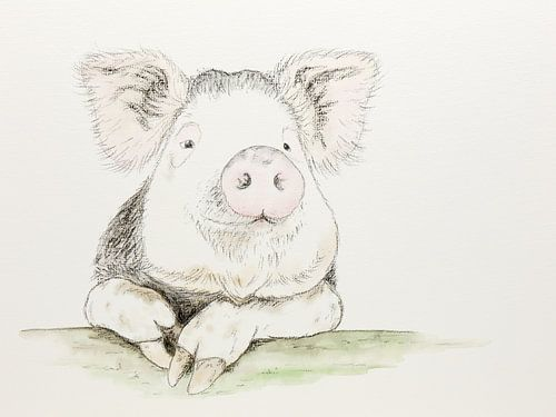 Het tevreden varken