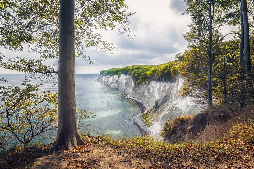 Kollicker Ufer (Nationalpark Jasmund) von Dirk Wiemer
