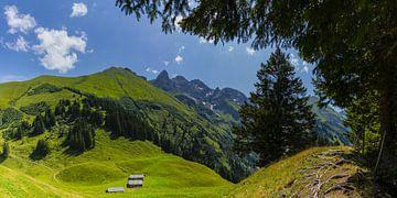 Hintere Einödsberg-Alpe van Walter G. Allgöwer