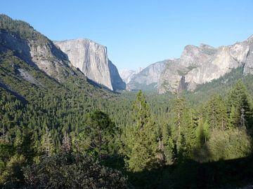 Vallei, Yosemite National Park, USA van Jeffrey de Ruig