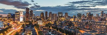 Der Panoramablick von Rotterdam von MS Fotografie | Marc van der Stelt