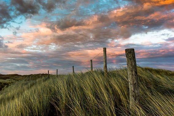 de noord hollandse duinen