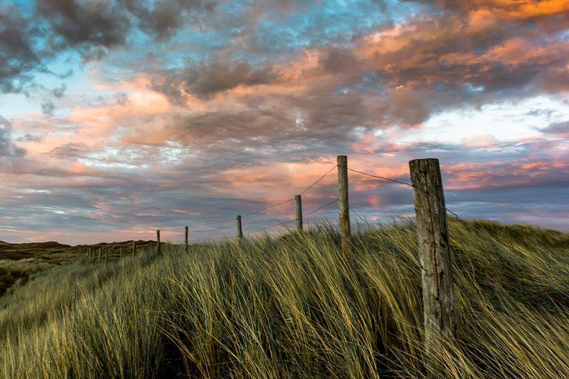 de noord hollandse duinen van Frans Bruijn