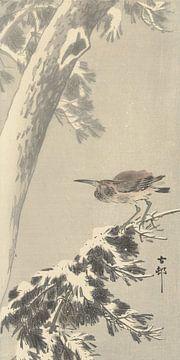 Indischer Quacksalber auf verschneiten Baumzweigen des Ohara Koson