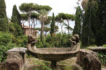Park Sciarra in Rom von Wendy Hilberath
