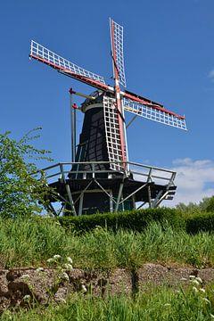 Windmühle Windlust in Brouwershaven von Rob Pols