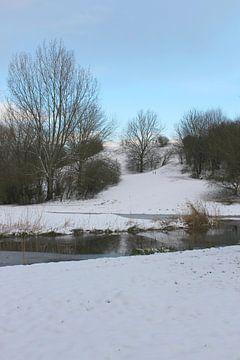 Winter wonderland 1 van Carin Klabbers