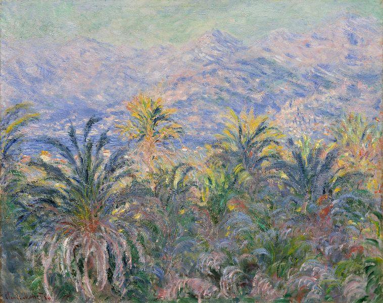 Palmen bij Bordighera, Claude Monet van Meesterlijcke Meesters