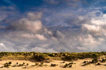 Paysage de dunes aux Pays-Bas