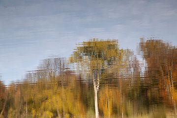 Herfst spiegeling in water van Daan Ruijter