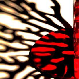Red Hot 7 van Rob van der Pijll
