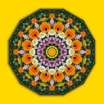 Tulip Dreams, Flower mandala, Floral mandala-style van Barbara Hilmer-Schroeer