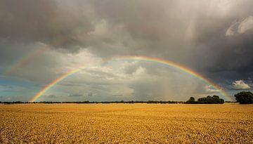 Regenboog over het veld van Frank Herrmann