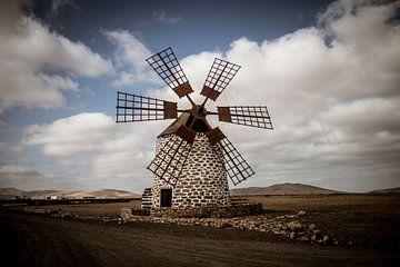 Windmühle von Tefía, Fuerteventura, Kanarische Inseln von Daan Duvillier