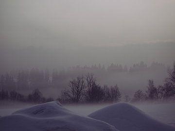 Mistig Landschap von Daniel Verhoef