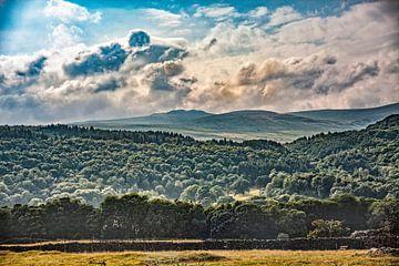 Newby bridge view von Freddy Hoevers
