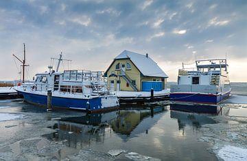 Hafen in Born im Winter von Rico Ködder