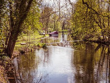 Landschap in het Spreewald in Brandenburg van Animaflora PicsStock