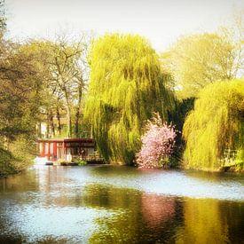 Lente in Utrecht bij Park Oog in Al sur De Utrechtse Grachten