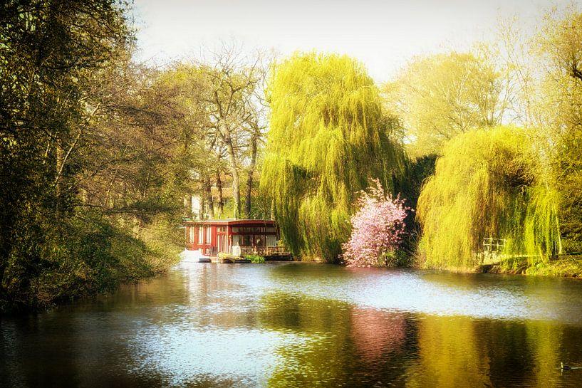 Lente in Utrecht bij Park Oog in Al van De Utrechtse Grachten