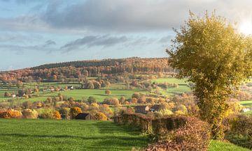 Herfstkleuren in Zuid-Limburg von John Kreukniet