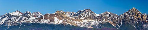 Bergtoppen van de Canadese Rockies
