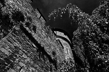 Oude Stadsmuur Maastricht zwart / wit van