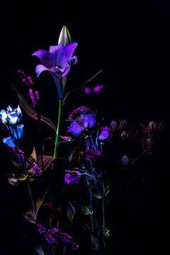 Blumenstrauß in der Nacht von K Top